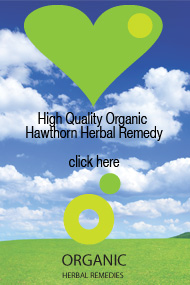 Organic hawthorn tincture can help with heart disease, angina and palpitations